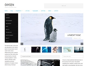 WordPress website template Oxygen-Child
