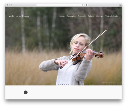 Pinnacle template WordPress free - judithviolin.com