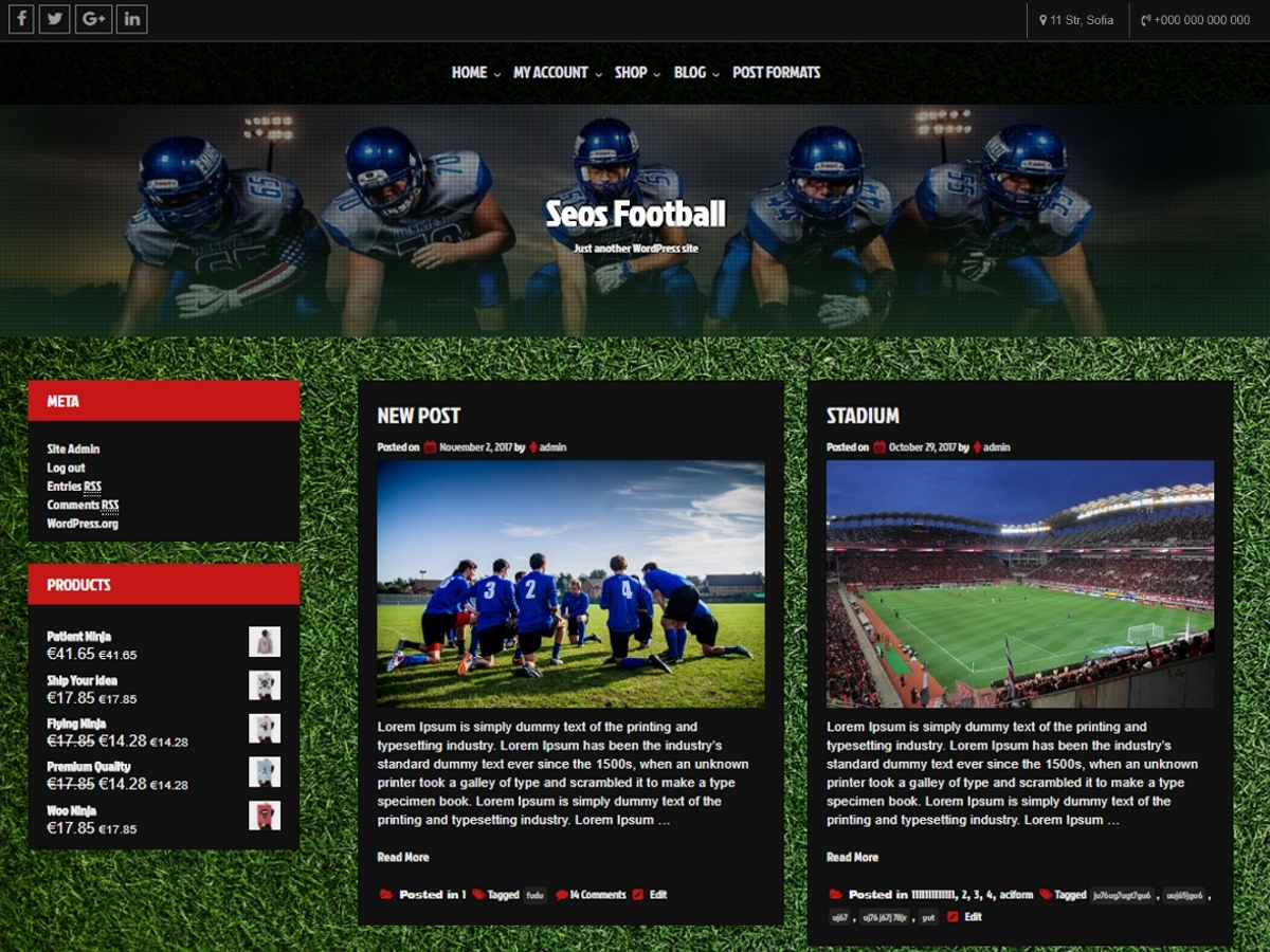 Seos Football fitness WordPress theme