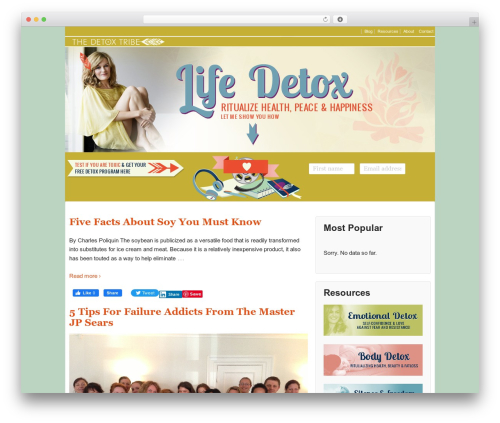 Responsive best free WordPress theme - thedetoxtribe.com