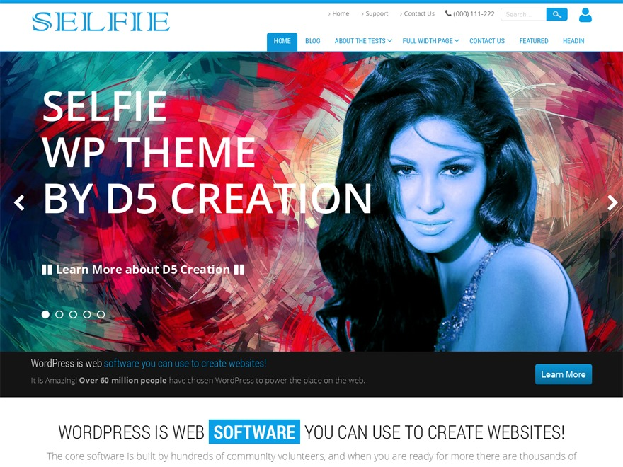 Selfie Extend WordPress theme