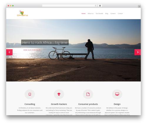 Best WordPress template Salient - efetalena.com