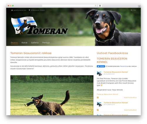 The7.2 WordPress theme - tomeran.com