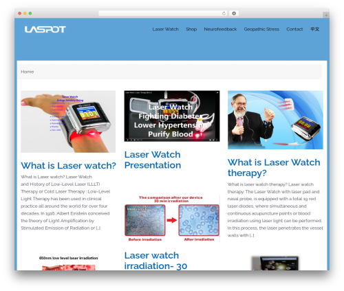 Sydney best free WordPress theme - laspot-asiapacific.com