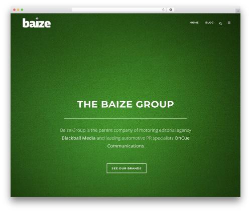 Bridge business WordPress theme - thebaize.com