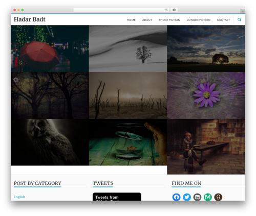LongformPRO WordPress template - hadarbadt.com