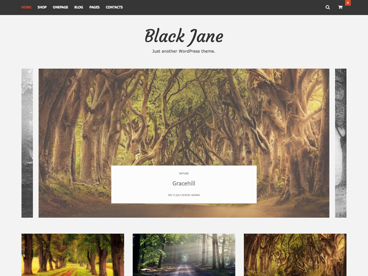 Black Jane WordPress theme design