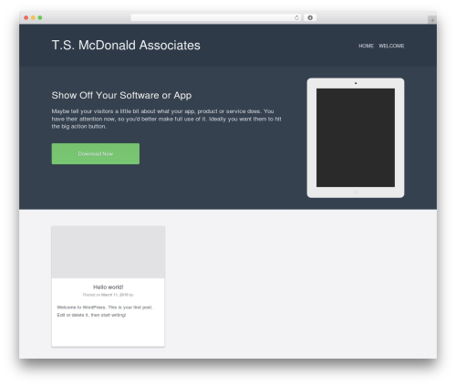 Current best free WordPress theme - tsmcdonald.com