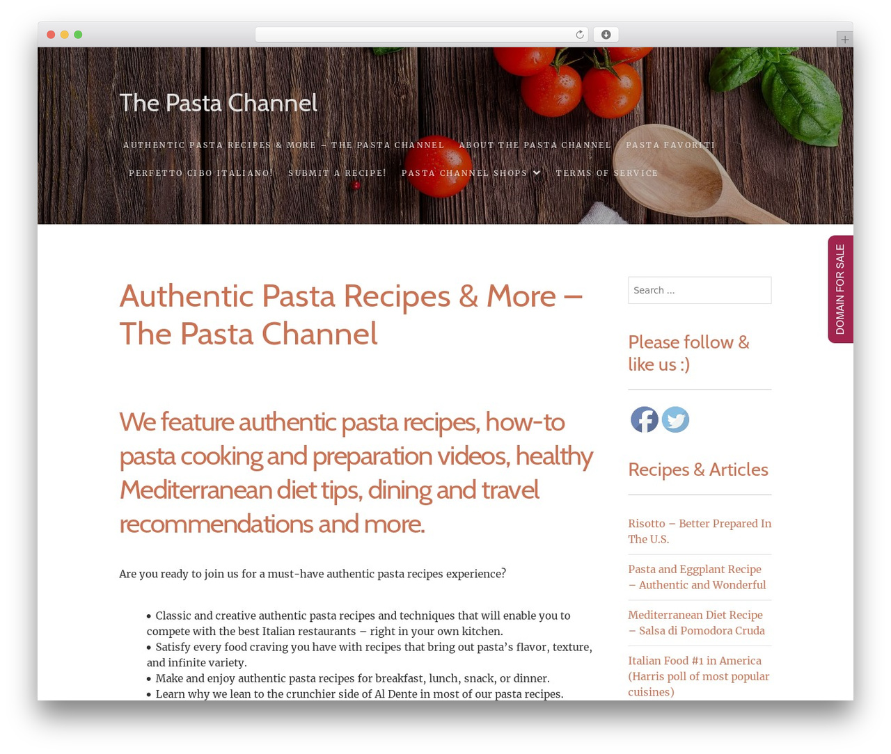 Food Express WordPress template free download - thepastachannel.com