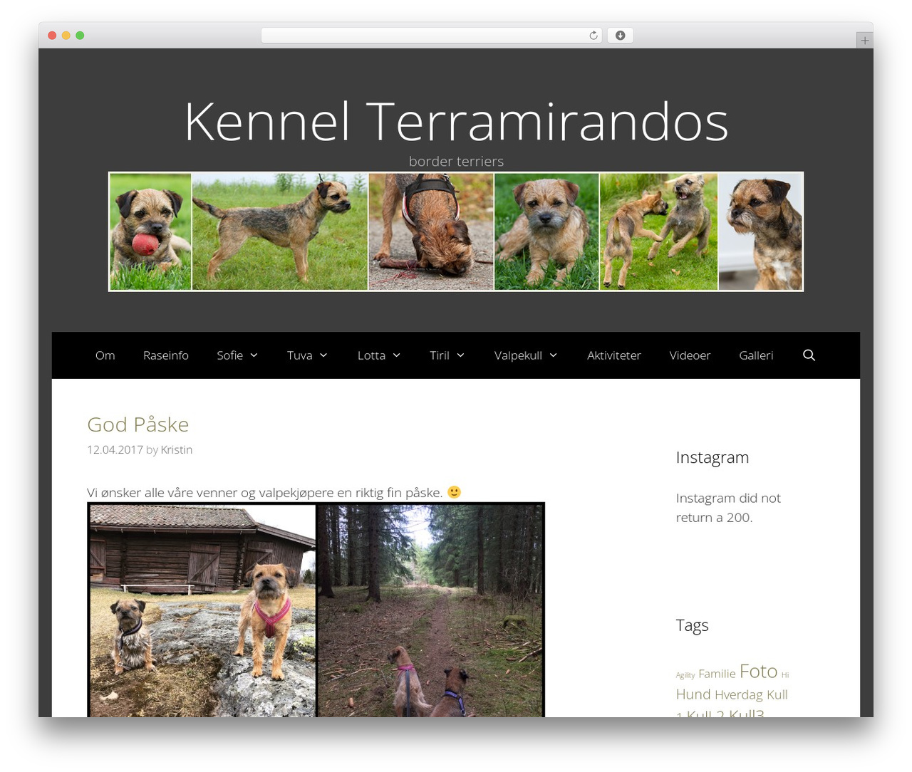Freelancer best free WordPress theme - terramirandos.com