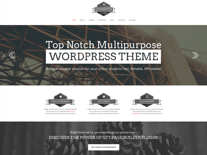 Quidditch Multipurpose Responsive WordPress Theme best WordPress gallery