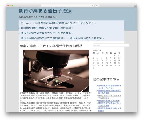 Metronome WordPress template - cleoxa.com