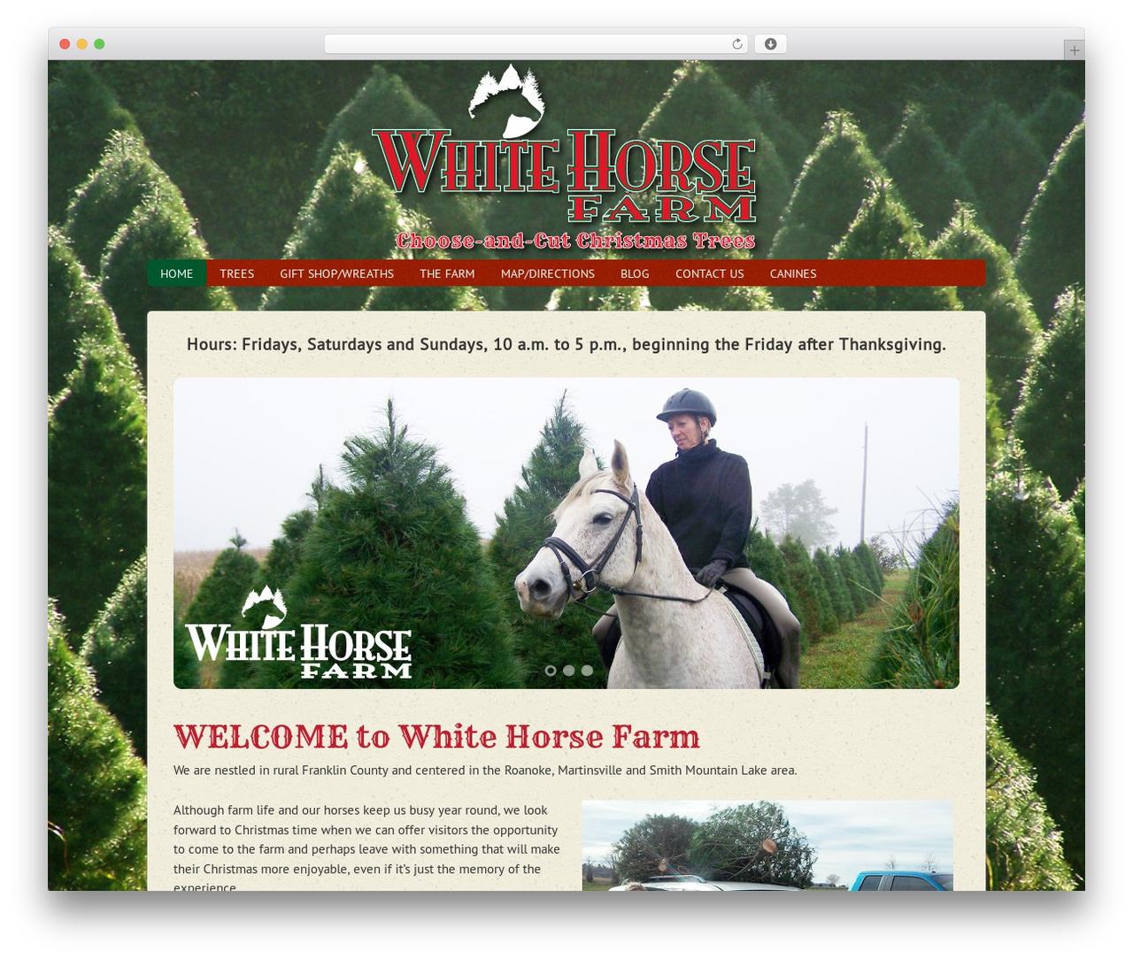 Agency Child Theme top WordPress theme - thewhitehorsefarm.com