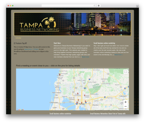 Catalyst WordPress website template - tampabusinessnetworking.org