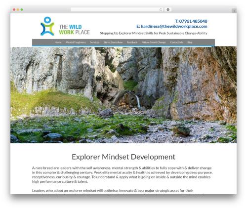 Free WordPress Sitemap plugin - thewildworkplace.com
