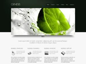 WordPress theme Genesis Green