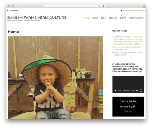 Greenhouse WordPress page template - bammmfarms.com