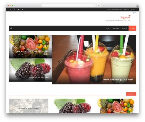 Awaken WordPress website template - bombesal.com