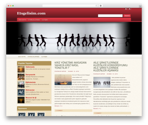 WordPress website template Oracle - etsgelisim.com