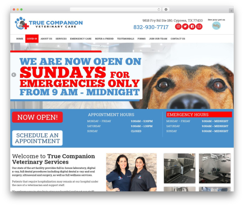 Virtue WordPress theme - truecompanionvetcare.com