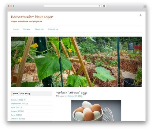 Speedy WordPress theme - homesteadernextdoor.com