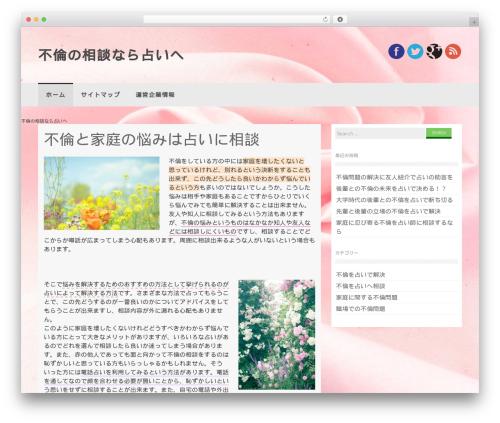 Coller best WordPress theme - tisoc.org