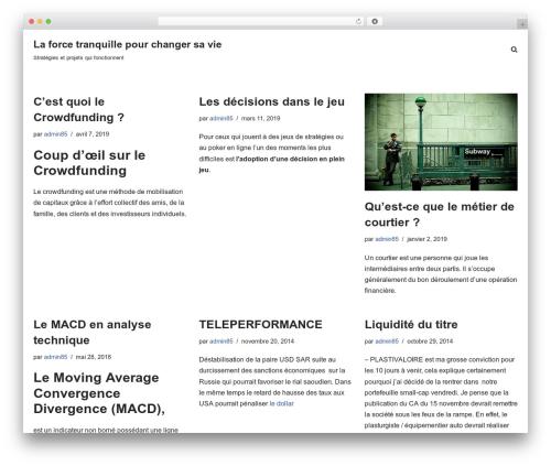 neve WordPress theme design - thequietstormproject.com