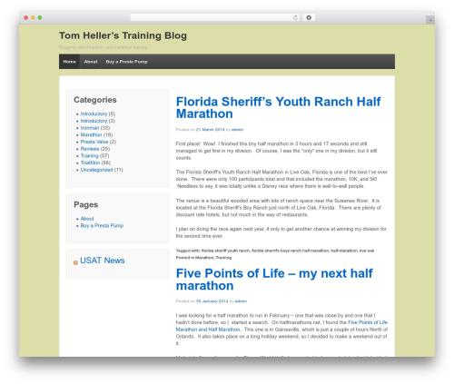 Responsive WordPress blog template - tomheller.com