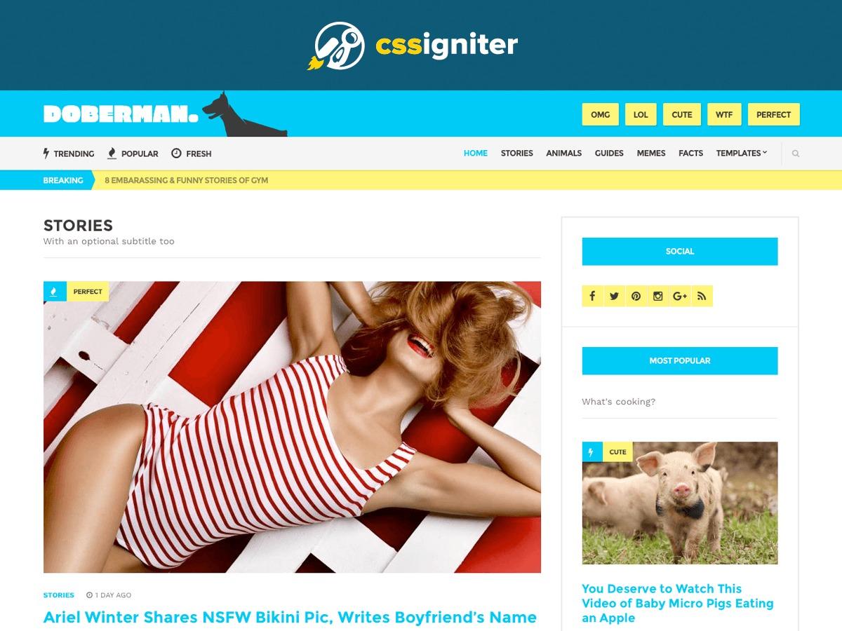 Theme WordPress Doberman