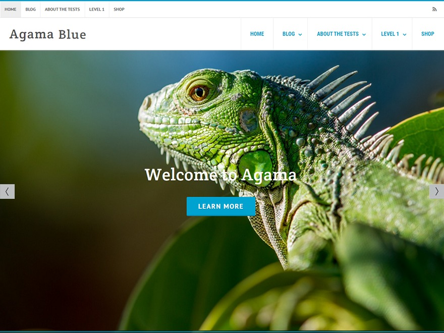 Template WordPress Agama Lashawn