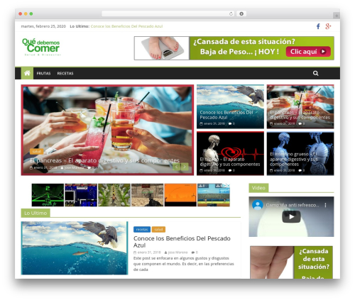 WP theme ColorMag Pro - quedebemoscomer.com