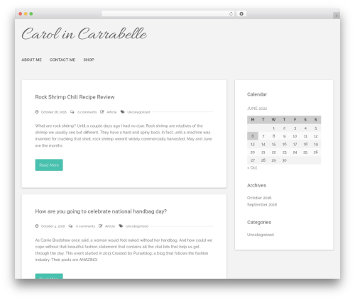 WordPress website template Polar Lite - carol-in-carrabelle.com