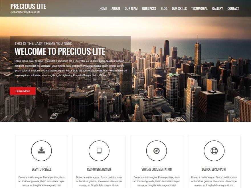 Best WordPress template Precious Lite Pro Child