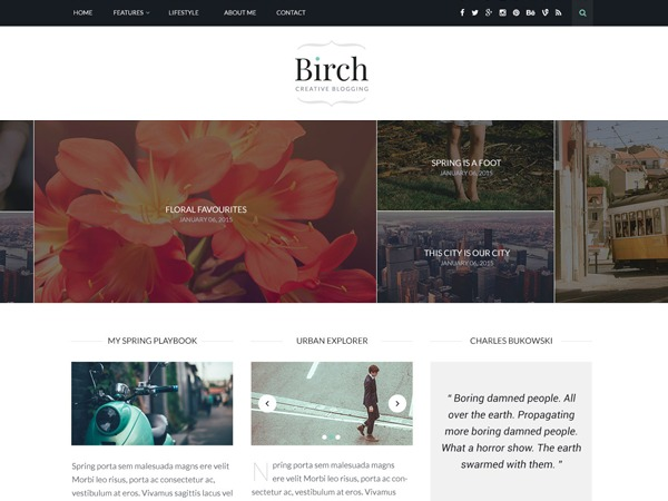 Birch WordPress blog theme
