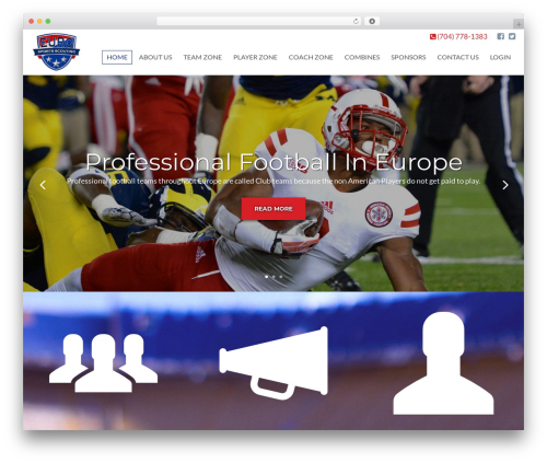 Client Theme best WordPress template - euroballers.com