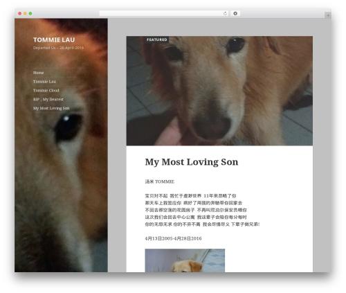 Twenty Fifteen WordPress free download - tommielau.com