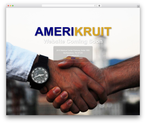 Client Theme best WordPress template - amerikruit.com