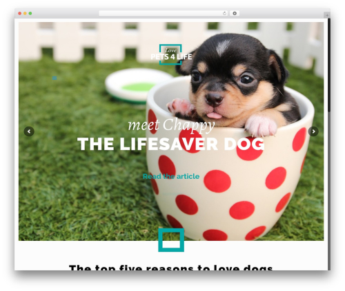 Betheme WordPress template - lovepets4life.com