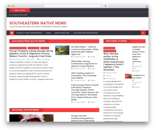 Eggnews free WP theme - shinjak.com