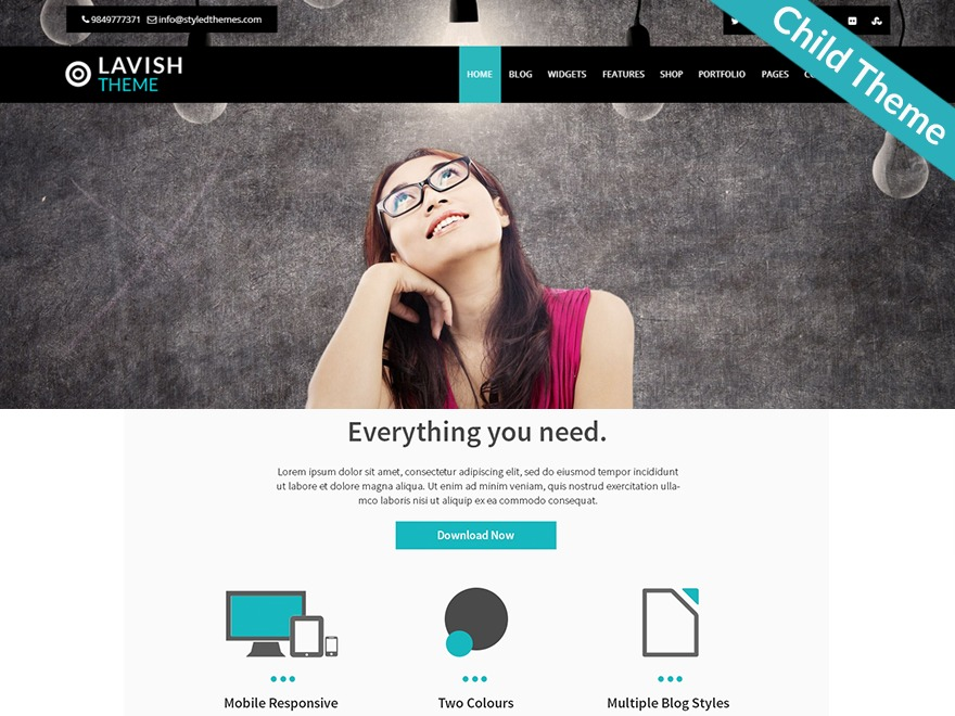 Lavish Pro Child business WordPress theme