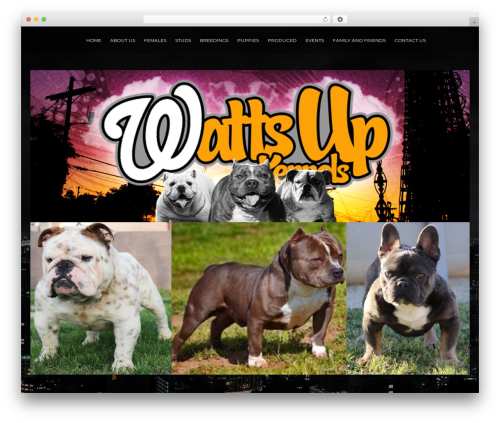 ResponsiveBoat WordPress theme - wattsupkennels.com