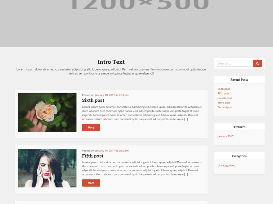 Home Solutions best WordPress template