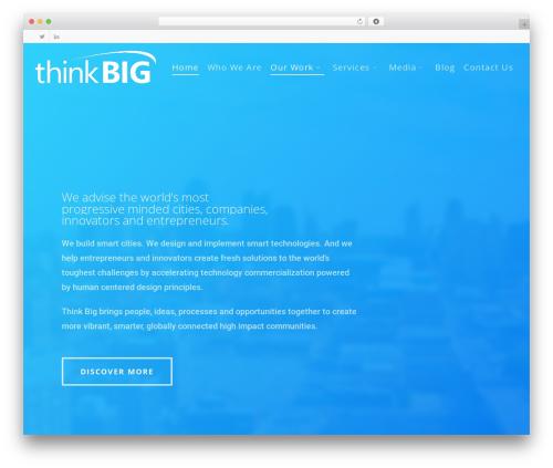 WordPress theme Salient - thinkbigpartners.com