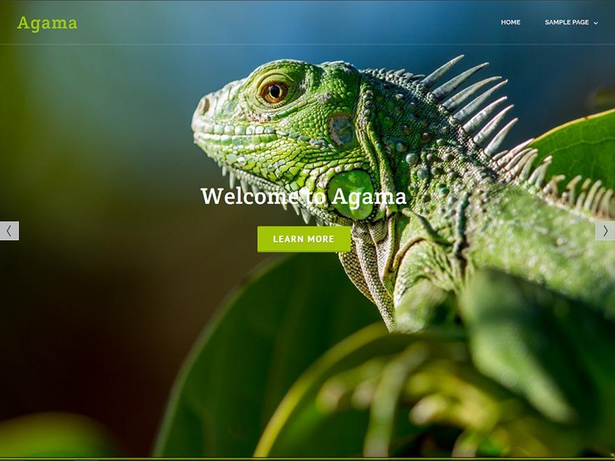 Agama WordPress portfolio template