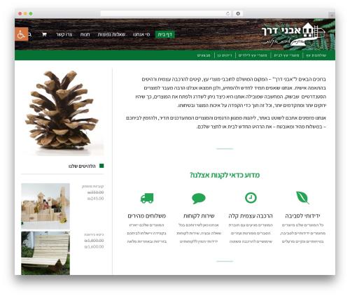 Scoop top WordPress theme - avney-derech.com