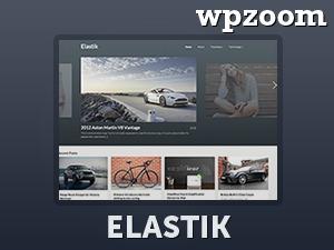 Best WordPress theme Elastik