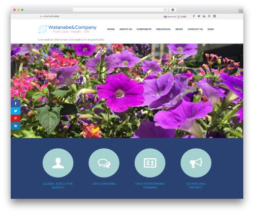 Best WordPress theme LifeCoach - watanabeac.com