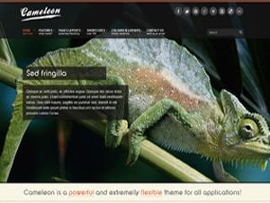 Cameleon theme WordPress