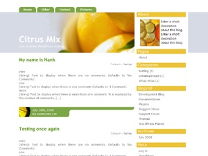 Citrus Mix WordPress template