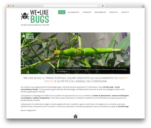 WordPress slider-image plugin - welikebugs.com